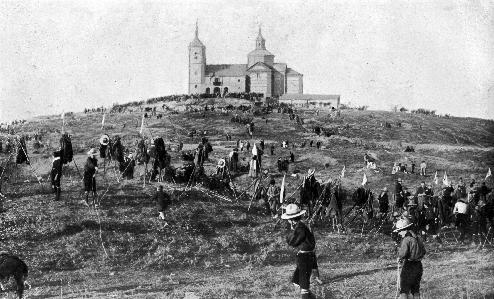 Y volvieron a plantar árboles en 1913