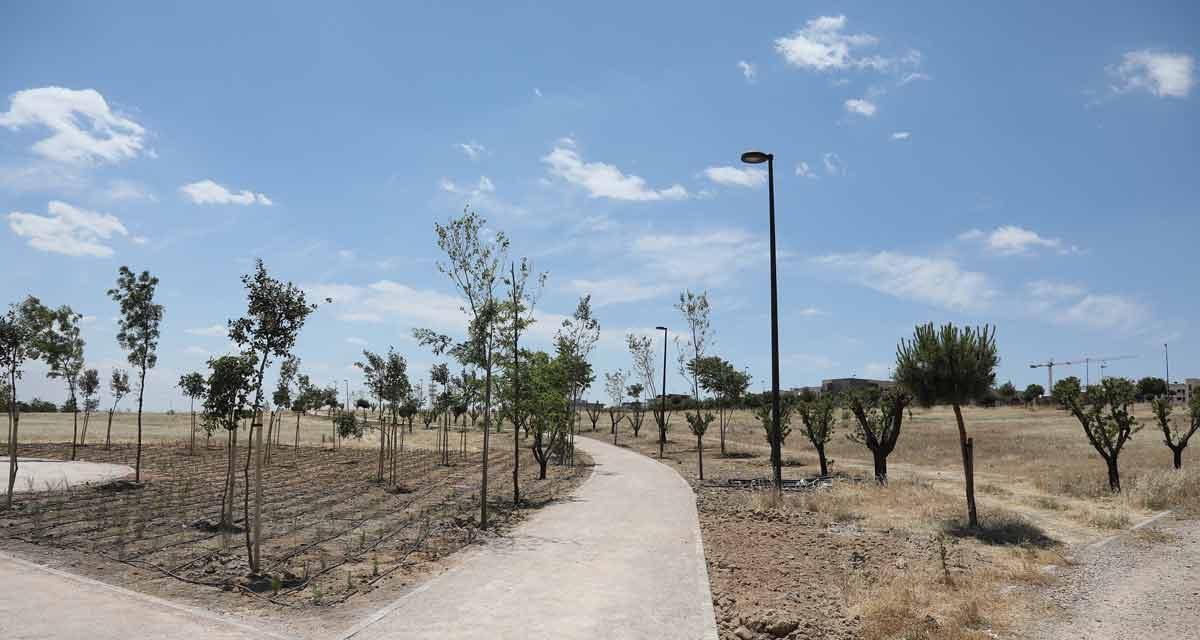 Otro parche en el Parque de la Alhóndiga-Sector 3